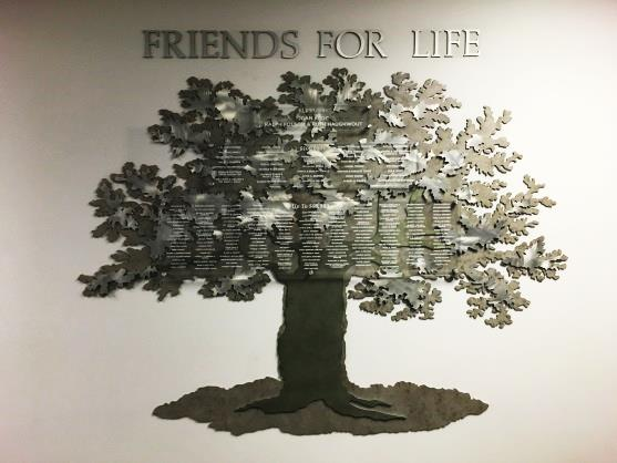 Friends for Life Recognition Wall